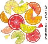 bright juicy citrus fruit... | Shutterstock . vector #759354124