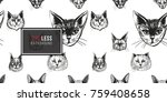 detailed realistic hand drawn...   Shutterstock .eps vector #759408658