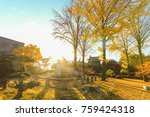 beautiful autumn color trees ... | Shutterstock . vector #759424318