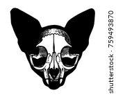 skull of a cat. cat silhouette. ... | Shutterstock .eps vector #759493870