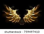 shiny  golden angel wings on...   Shutterstock .eps vector #759497410