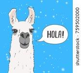 funny lama alpaca portrait with ... | Shutterstock .eps vector #759502000