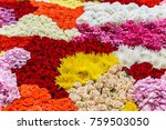 floral background with colorful ... | Shutterstock . vector #759503050