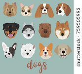 species of the breeds of dogs ... | Shutterstock .eps vector #759505993