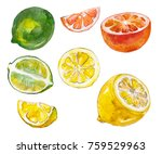 watercolor painted collection... | Shutterstock . vector #759529963