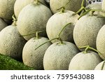 Cantaloupe Melons In Market ...