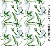 wildflower orchid flower... | Shutterstock . vector #759545248