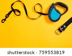 black leather dog collar and...   Shutterstock . vector #759553819