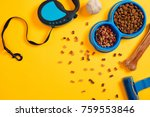 Stock photo pet accessories food toy top view 759553846