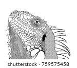 reptile iguana lizard home pet... | Shutterstock .eps vector #759575458