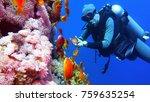 man scuba diver and beautiful... | Shutterstock . vector #759635254
