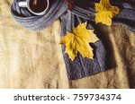 cup of tea wrapped in a scarf | Shutterstock . vector #759734374