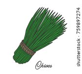 chives herb spice leaves  a... | Shutterstock .eps vector #759897274