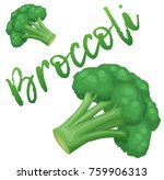 broccoli vegetable icon.... | Shutterstock .eps vector #759906313