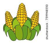 isolated corn design | Shutterstock .eps vector #759948550