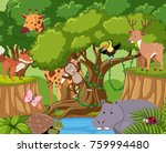 wild animals live in the forest ... | Shutterstock .eps vector #759994480