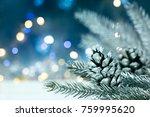Silver Christmas Tree Branch...