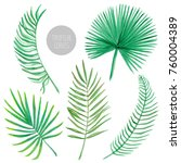 watercolor tropical palm leaves ... | Shutterstock . vector #760004389