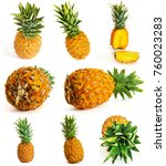 many different pineapple on... | Shutterstock . vector #760023283