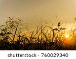 landscape of grass and flower... | Shutterstock . vector #760029340