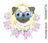 pug dog face    illustration... | Shutterstock . vector #760040776