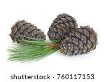 siberian pine branch with cones ...   Shutterstock . vector #760117153