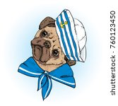 a beautiful dog in sailor... | Shutterstock .eps vector #760123450