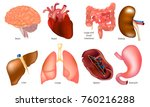 different human organs set  ... | Shutterstock .eps vector #760216288