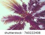 coconut palm tree on sky  ... | Shutterstock . vector #760222408