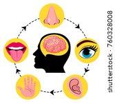 set of five human senses ...   Shutterstock .eps vector #760328008