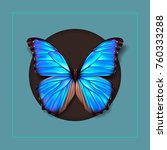 Realistic Picture Butterfly...