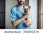 Stock photo cropped image of handsome male doctor veterinarian at clinic is holding little dog yorkshire 760342174
