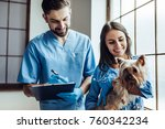 Stock photo handsome doctor veterinarian and his attractive assistant at vet clinic are examining little dog 760342234