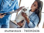 Stock photo cropped image of handsome doctor veterinarian at vet clinic is examining cute cat while his owner 760342636