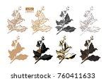 vector set of coffee tree... | Shutterstock .eps vector #760411633