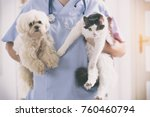 vet with dog and cat in his... | Shutterstock . vector #760460794
