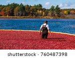 carlisle  ma  usa   october 17  ... | Shutterstock . vector #760487398