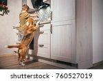 boy prepare omelette for... | Shutterstock . vector #760527019