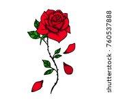 rose vector illustration.... | Shutterstock .eps vector #760537888