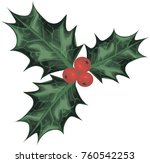 holly vector art  | Shutterstock .eps vector #760542253