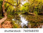 in an enchanted forest | Shutterstock . vector #760568350