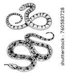 viper snake. serpent cobra and... | Shutterstock .eps vector #760583728