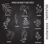 anxiety treatment herbs...   Shutterstock .eps vector #760593760