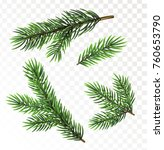 fir tree branches isolated on...