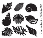 Vector Sea Shells. Seashell...