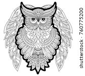 coloring book for adult and... | Shutterstock . vector #760775200