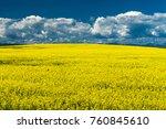 canola field in southern... | Shutterstock . vector #760845610