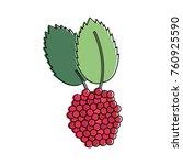 delicious raspberries fruit | Shutterstock .eps vector #760925590