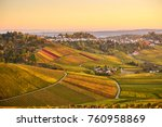 Vineyards In Stuttgart  ...