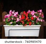beautiful summer flowers in a... | Shutterstock . vector #760985470